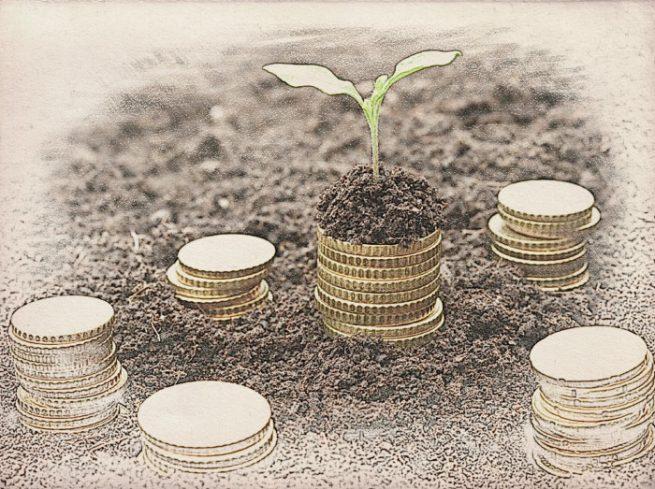 Оценка для уставного капитала